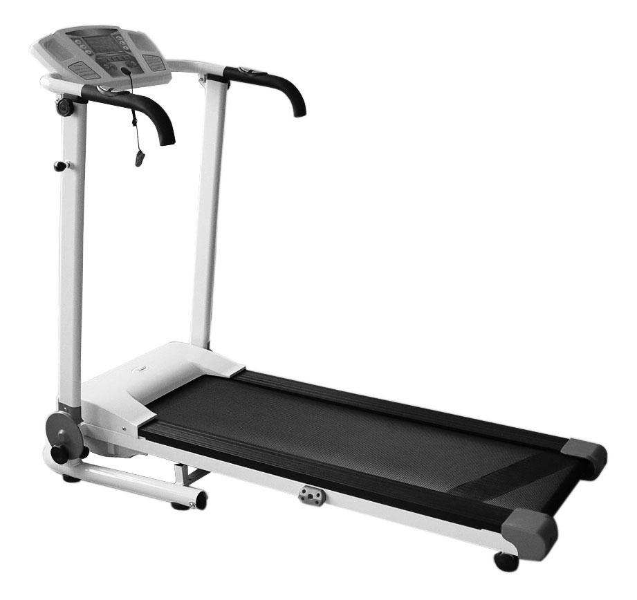 Master Fitness 290