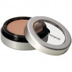 Glominerals Camouflage Oil free Concealer